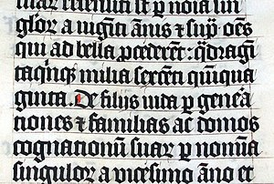 Black letter in a Latin Bible of AD 1407, on d...