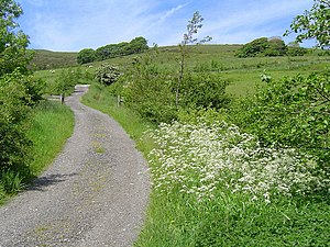 English: Country Lanes. The Country lane leadi...