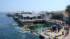 English: Back view of Monterey Bay Aquarium.