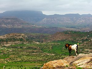 Ethiopian highlands.