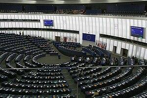 The European Parliament in debate