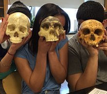 Three students hold three different skulls in front of their faces, to show the difference in size and shape compared to the modern head