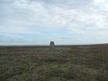 English: Pikeston Fell Triangulation Pillar Plenty of healthy growth of new heather here so plenty of grouse also.
