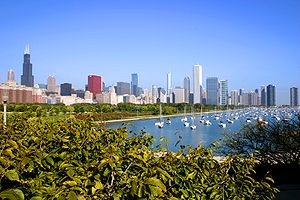 English: Downtown from the lakefront, Chicago,...