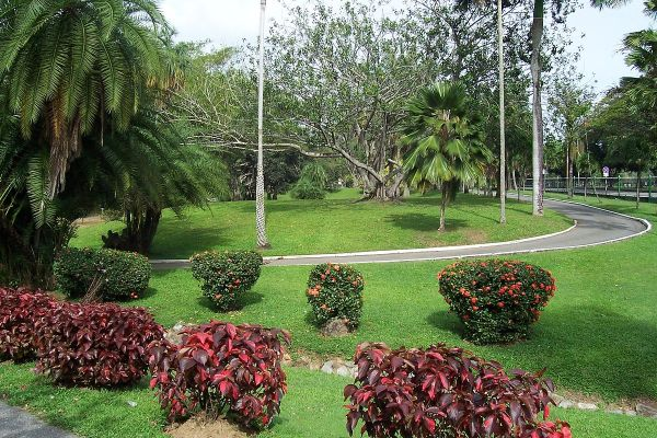 Royal Botanic Gardens, Trinidad - Wikipedia