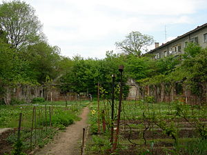 Garden in a complex of early Communist-era apa...