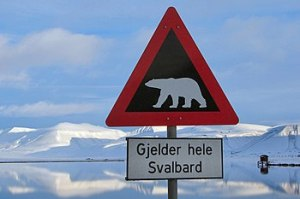 English: A road sign just outside Longyearbyen...