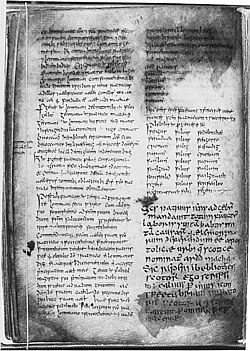 page from the book of Armagh.
