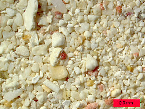 English: Coral sand from a beach in Aruba.