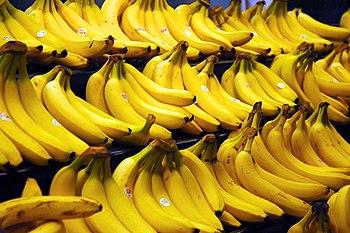 Cavendish bananas are the main commercial bana...