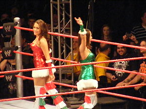 Professional wrestlers The Bella Twins in a Sa...