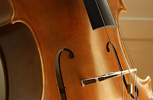 The midsection of a cello.