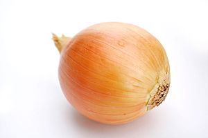 Onion white background