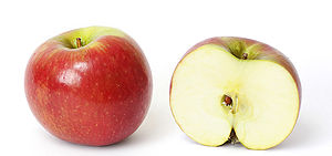 'Sundown' apple cultivar and its cross section