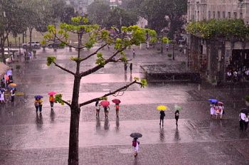 The walking in the rain