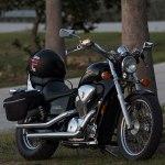 Honda Vt600c Wikipedia