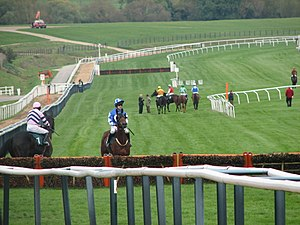 English: Before the Race Cheltenham Racecourse
