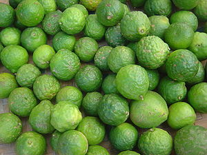 A batch of kaffir limes (Citrus × hystrix).