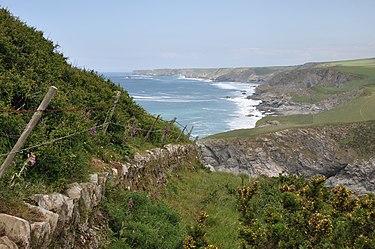 Caminho da costa DSC 8967.jpg