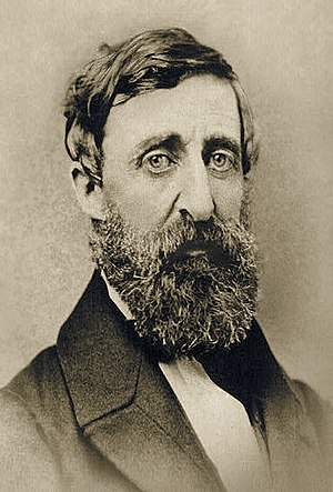 English: Henry David Thoreau, photograph taken...