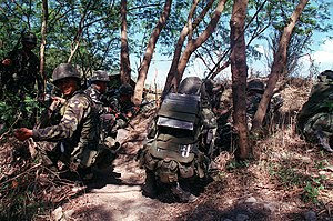 Philippine Marines armed with a 5.56mm M16A1 a...