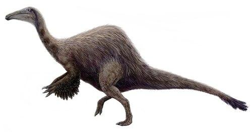 File:Hypothetical Deinocheirus.jpg