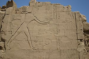 Thutmose III at Karnak.jpg