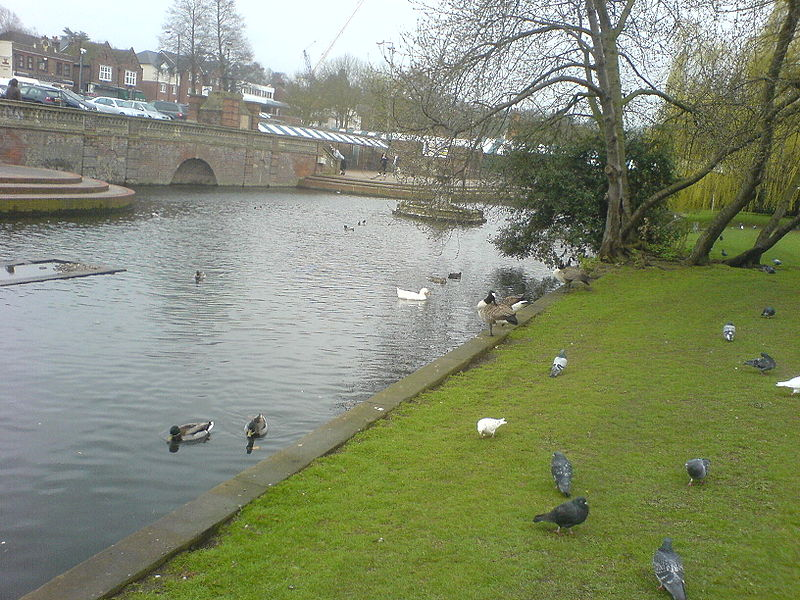 File:Hitchin river.JPG