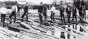 A workforce of log drivers from Finnskoga, wor...