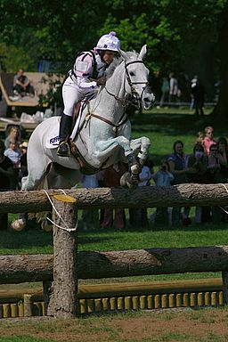 Badminton horse trials open ditch jump