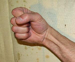 Fist by David Shankbone