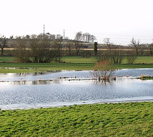 English: Flooded meadow beside Stoke Road Due ...