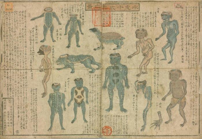 Dibujos sobre los Kappa que datan de mediados del siglo XIX del libro 水虎十二品之図 (Suiko juni-hin no zu) (Guía ilustrada a 12 tipos de Kappa) autor e ilustrador Juntaku - Internet, Dominio público, Enlace.