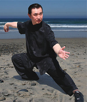 doc fai wong demonstrates tai chi technique sn...