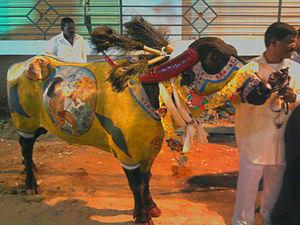 Diwali  Hyderabad
