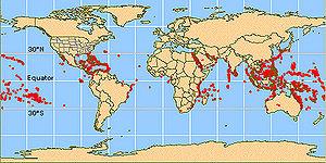 Location of Reef building corals