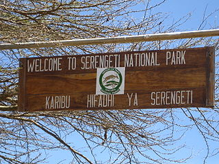 Welcome tu Serengeti national park