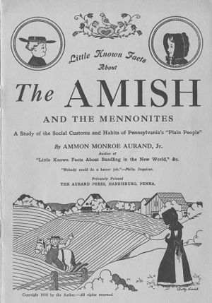 Birth of Mennonite movement