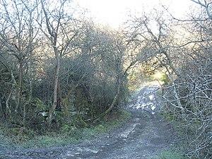 A frozen, muddy, track near Oerddwr cottage