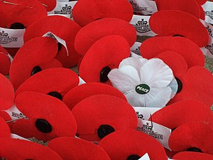 English: Artificial poppies left on the Waitat...