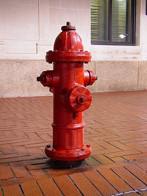 Fire hydrant in Charlottesville, Virginia, USA