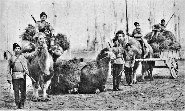 Orenburg Cossacks Wikipedia