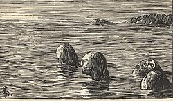 One gruesome form of execution occurred during the Christianization of Norway. King Olaf Tryggvason had male völvas (sejdmen) tied and left on a skerry at ebb. (1897 illustration by Halfdan Egedius)