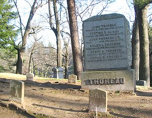 English: The Thoreau family gravesite in Sleep...