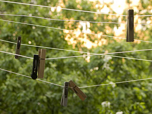 "English: Clothes pegs, hanging on ""dedica..."