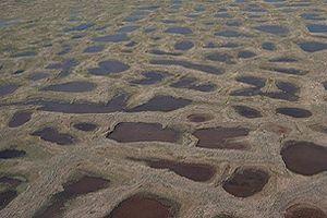 Permafrost - polygon