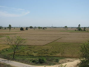 Typical Punjabi Landscape in April