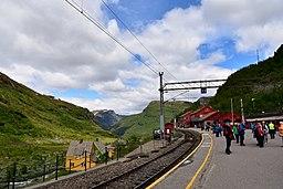 At Myrdal station (4)
