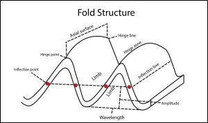 3D fold evolution  Wikipedia