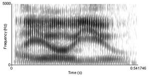"A spectrogram of the phrase ""I owe you"""